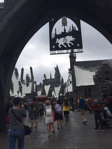Entering Harry Potter