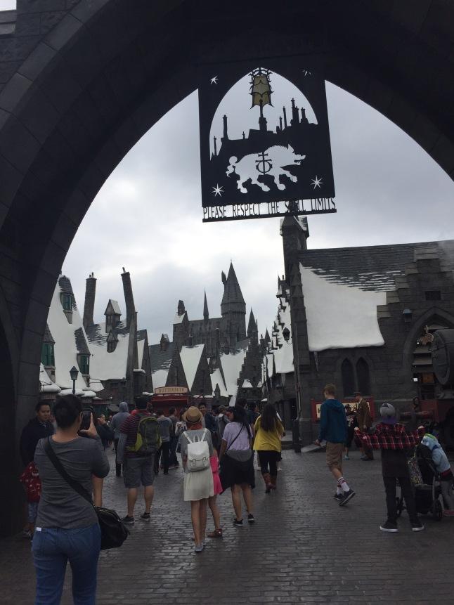 Entering Harry Potter