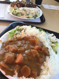 Curry and Chinese Chicken Salad